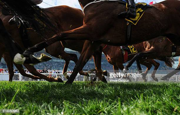 General view horses hoofs during Melbourne Racing at Caulfield Racecourse on September 24 2016 in Melbourne Australia