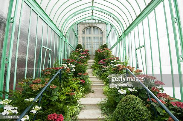 General view inside one ot the royal greenhouses at the Royal Castle of Laeken on April 19, 2013 in Brussels, Belgium. The gardens and greenhouses of...