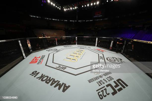 Elizeu Zaleski dos Santos of Brazil celebrates after knocking out Luigi Vendramini of Brazil in their welterweight bout during the UFC Fight Night...