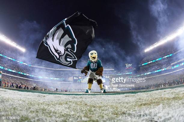 A general view of a goal post and the Philadelphia Eagles mascot Swoop waves the Eagles flag at the Lincoln Financial Field is seen during the NFC...