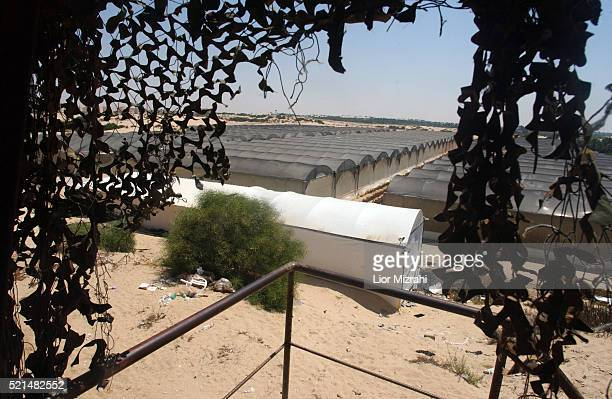 General view of a line of greenhouses located in the Gush Katif settlement of Rafiah Yam on Wednesday 20 July 2005