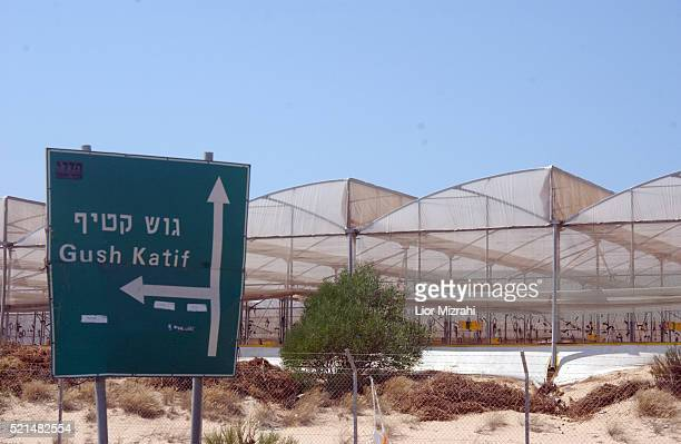 General view of a line of greenhouses located just off the main road of Gush Katif on Wednesday 20 July 2005