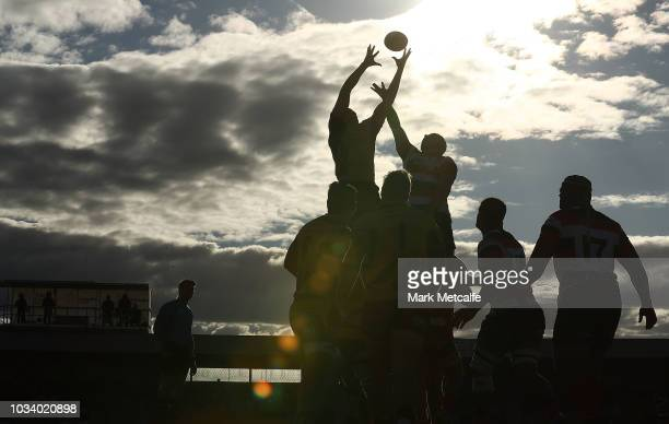 A general view of a lineout during the round three NRC match between Canberra Vikings and Western Force at Viking Park on September 16 2018 in...