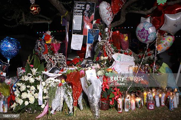 General view of a makeshift memorial in honor of singer Jenni Rivera who died in a plane crash aged 43 early on Sunday morning in Northern Mexico...