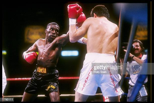 General view of a match between Julio Cesar Chavez and Roger Mayweather Mandatory Credit Holly Stein /Allsport
