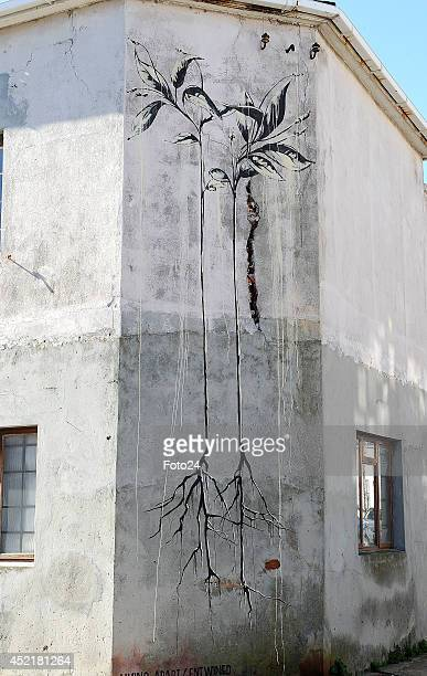 A general view of a mural in Woodstock on July 10 2014 in Cape Town South Africa Woodstock is considered the most densely packed urban art spot in...