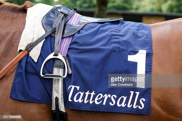 A general view of a Tattersalls sadlecloth at Salisbury Racecourse on August 16 2018 in Salisbury United Kingdom