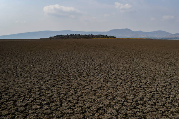 MEX: Drought Conditions Continue Across Lake Cuitzeo In Mexico