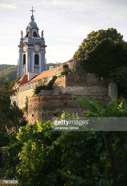 A general view of a vineyard of the Danubian Wachau region on July 24 2007 in Duernstein Austria Unusually strong insolation in eastern Austria has...