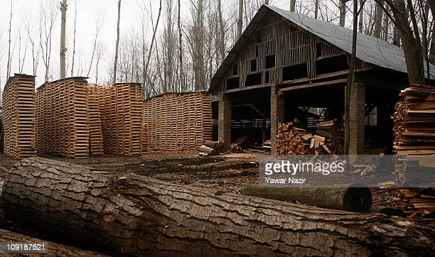 General view of a willow cleft factory used to make cricket bats on February 16 2011 in Halmullah near Srinagar in Kashmir India Cricket bat...