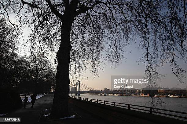 A general view of Albert Bridge over the River Thames from Battersea Park on February 10 2012 in London England Albert Bridge will be the start point...