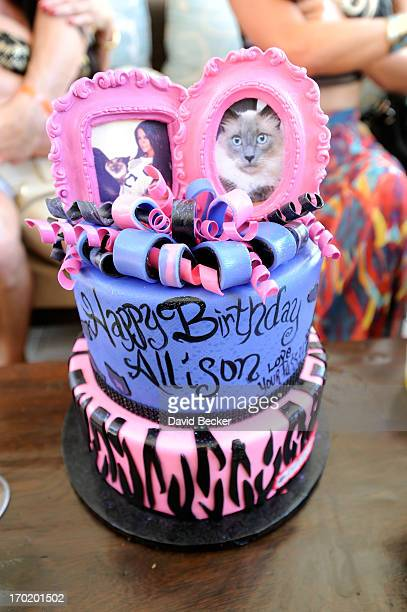 A general view of Allison Melnick's cake is on display at her birthday celebration at Daylight Beach Club at the Mandalay Bay Resort Casino on June 8...
