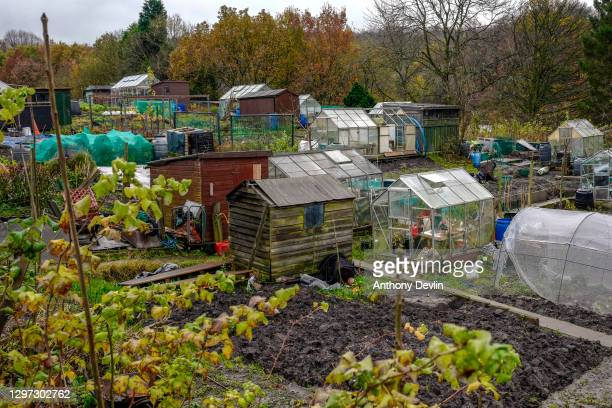 General view of an allotment on June 11, 2019 in Manchester, United Kingdom.