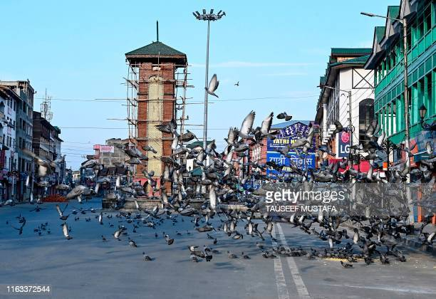 A general view of an empty place as pigeons take a flight during a lockdown in Srinagar on August 23 2019 An Indian soldier was killed by Pakistani...