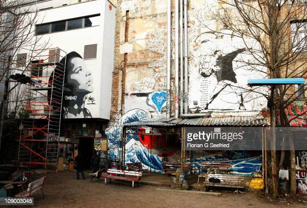 A general view of artwork created by graffiti artist Robbo featuring Zoe Kravitz during the 'Yelling To The Sky' photo session on February 11 2011 in...