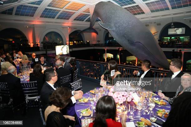 A general view of atmosphere at American Museum Of Natural History's 2018 Museum Gala at American Museum of Natural History on November 15 2018 in...