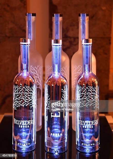 30 Top Moet Chandon And Belvedere Vodka Toast To Harpers