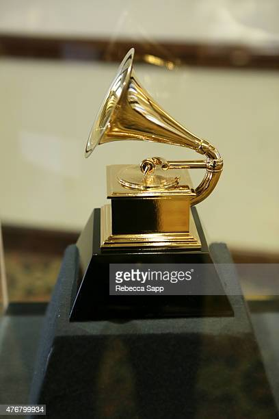 General view of atmosphere at the 2015 GRAMMY Partner Summit at The Fess Parker A Doubletree by Hilton Resort on June 11, 2015 in Santa Barbara,...