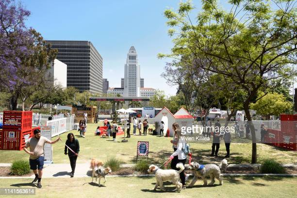 A general view of atmosphere at The Amazon Treasure Truck Pup Fest Event on May 5 2019 in Los Angeles California For more information visit...