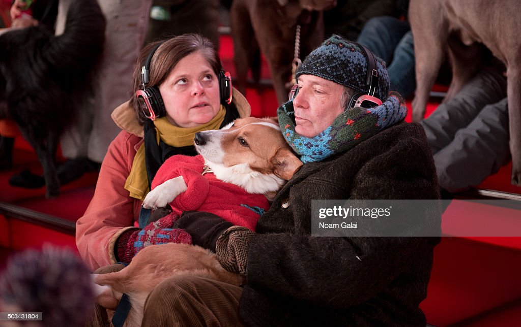 January Midnight Moment Concert For Dogs: Heart Of A Dog By Laurie Anderson : News Photo