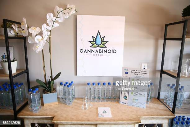 A general view of atmosphere at the KALEIDOSCOPE REFRESH presented by Cannabinoid Water on April 16 2017 in La Quinta California