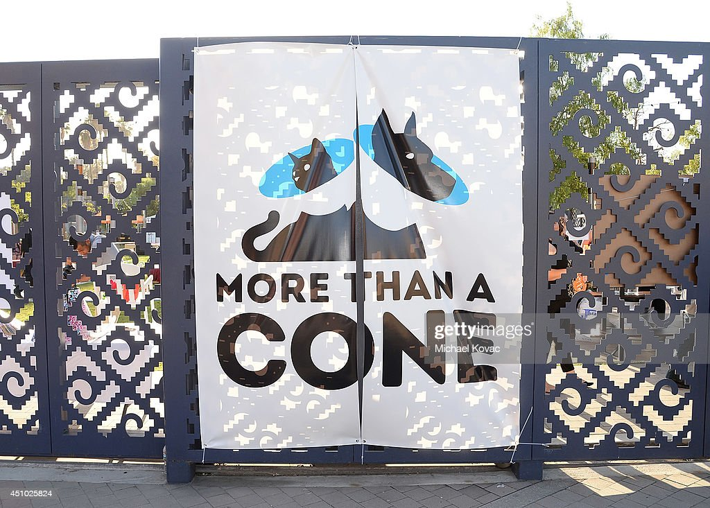 A general view of atmosphere at the 'More Than a Cone' art auction and campaign launch benefiting Best Friends Animal Society in Los Angeles where renowned artists re-imagined the 'cone of shame' to raise awareness for animals in need at LA Plaza de Cultura y Artes on June 21, 2014 in Los Angeles, California.