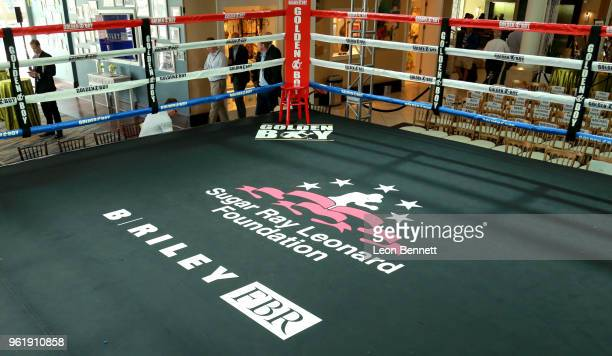 A general view of atmosphere at the Sugar Ray Leonard Foundation 9th Annual Big Fighters Big Cause Charity Boxing Night presented by B Riley FBR Inc...