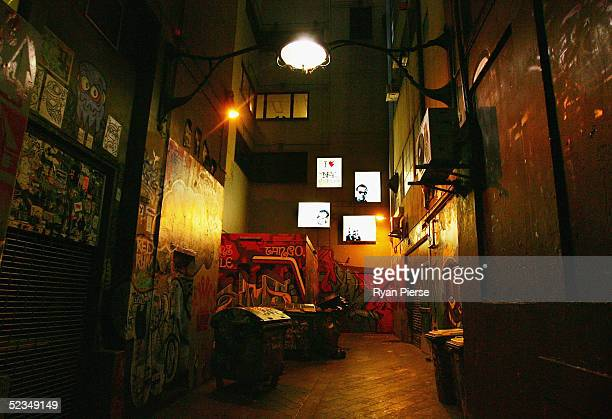 A general view of Crime Walls a laneway installation by Melbourne artist Regan Smith in Central Place on March 10 2005 in Melbourne Australia The art...