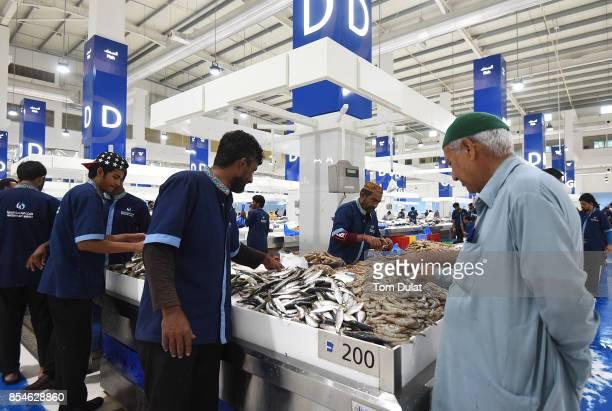 60 Top Dubai Fish Market Pictures, Photos, & Images - Getty