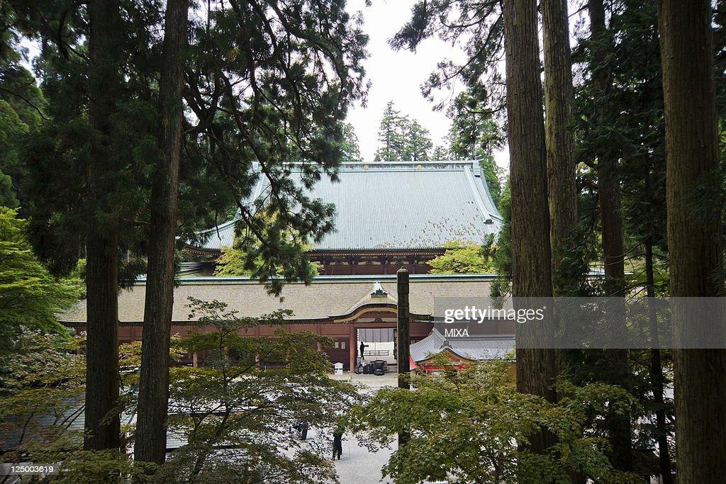 Japan Landscapes : ニュース写真
