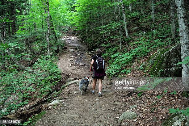 A general view of hikers and hiking on the Champney Brook Trail on Mt Chocorua on the Kancamagus Highway as part of the New Hampshire White Mountain...