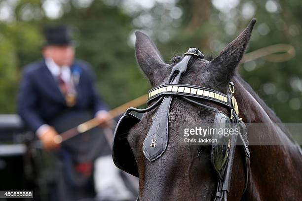 A general view of horse drawn carridge during day three of Royal Ascot at Ascot Racecourse on June 19 2014 in Ascot England