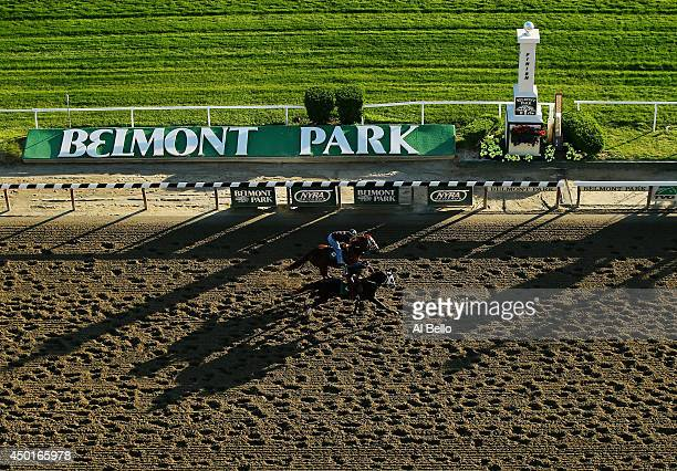 A general view of horses and exercise riders training on the main track at Belmont Park on June 6 2014 in Elmont New York