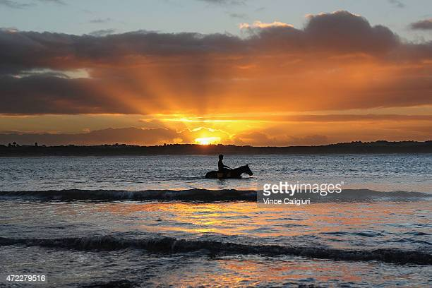 General view of horses at sunrise during a Warrnambool trackwork session at Lady Bay on May 6 2015 in Warrnambool Australia