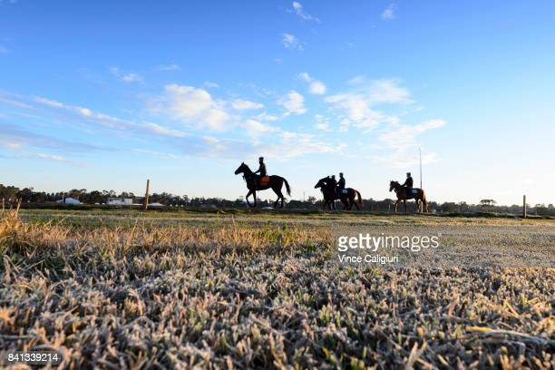 General view of horses during a trackwork session on a cold and frosty first day of Spring at Flemington Racecourse on September 1 2017 in Melbourne...