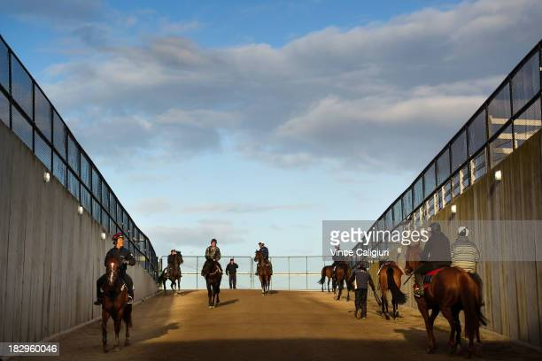 General view of horses during trackwork at Flemington Racecourse on October 3 2013 in Melbourne Australia