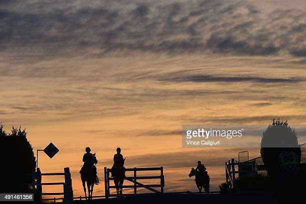 General view of horses heading out for trackwork at Caulfield Racecourse on October 6 2015 in Melbourne Australia