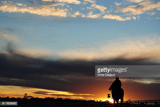 General view of horses heading out for trackwork session on the course proper at Flemington Racecourse on October 25 2016 in Melbourne Australia