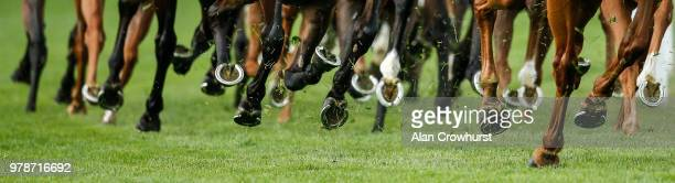 A general view of horses hooves on day 1 of Royal Ascot at Ascot Racecourse on June 19 2018 in Ascot England