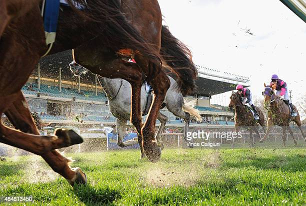 General view of horses kicking up sand in Race 7 the IPrint Carlyon Stakes during Melbourne racing at Moonee Valley racecourse on August 22 2015 in...