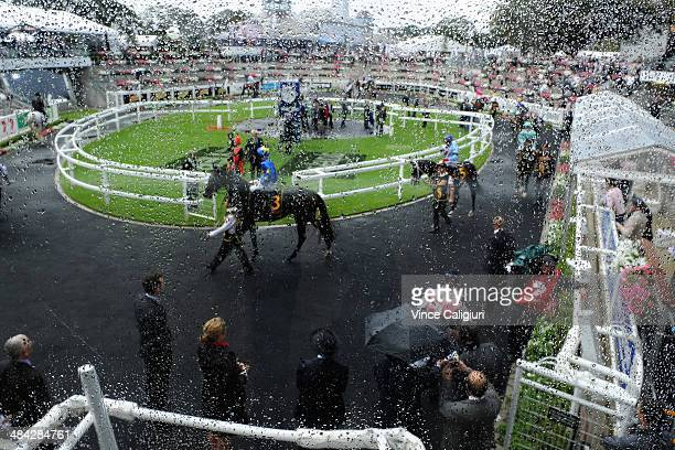 General view of horses parading in the mounting yard in the wet and windy conditions during day one of The Championships at Royal Randwick Racecourse...