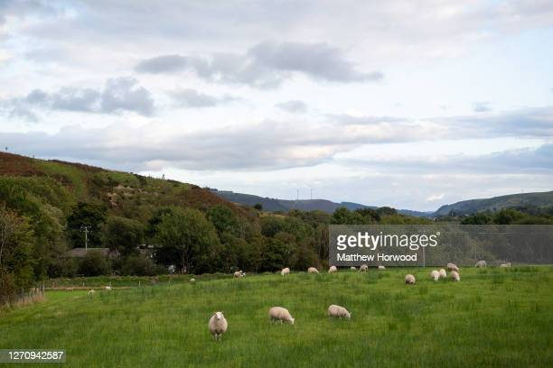 General view of land in Nantybwch on September 5, 2020 in Tredegar, Wales. Police broke up the rave shortly after it started. The latest figures from...