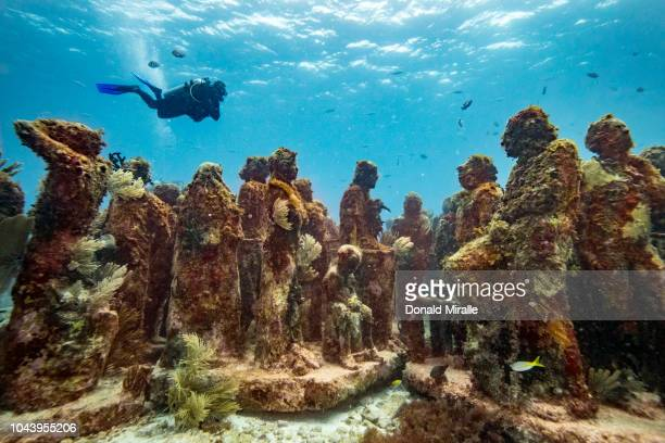 A general view of lifesized underwater statues at MUSA off the coast of Isla Mujeres Mexico on September 26 2018 Consisting of over 500 permanent...