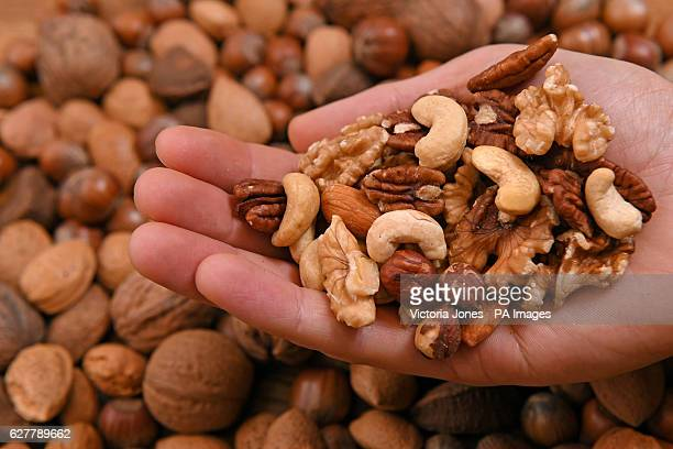 General view of mixed nuts including cashew almonds hazlenuts walnuts pecan nuts and pistachio nuts being held in a hand and in their shells...
