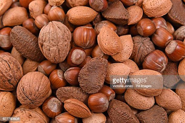 General view of mixed nuts including hazelnuts walnuts almonds and Brazil nuts