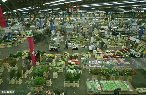 A general view of New Covent Garden Flower Market on February 11 2009 in London England New Covent Garden Flower Market is London's premier wholesale...