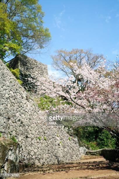 A general view of Oka Castle and Cherry Blossomson April 12 2008 in Takeda Oita Japan