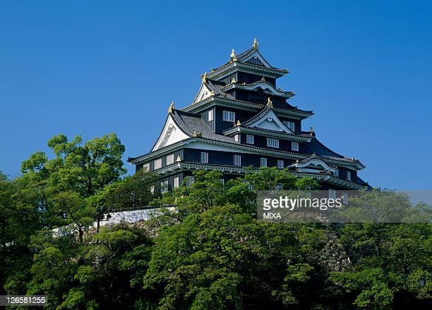 A general view of Okayama Castle on April 1 2009 in Okayama Japan