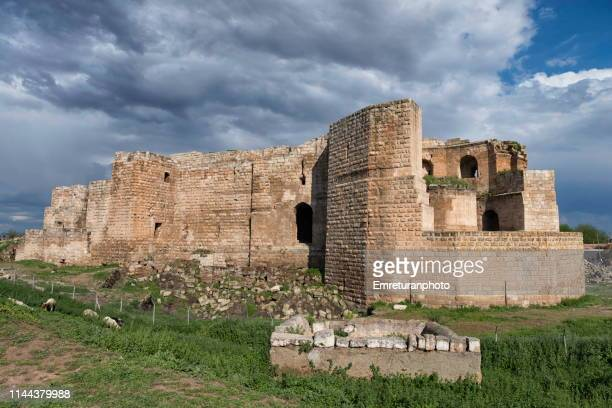 general view of old harran castle on a sunny day,şanlıurfa province. - emreturanphoto stock-fotos und bilder