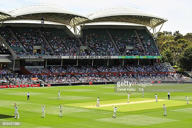 A general view of play during day one of the Third Test match between Australia and South Africa at Adelaide Oval on November 24 2016 in Adelaide...